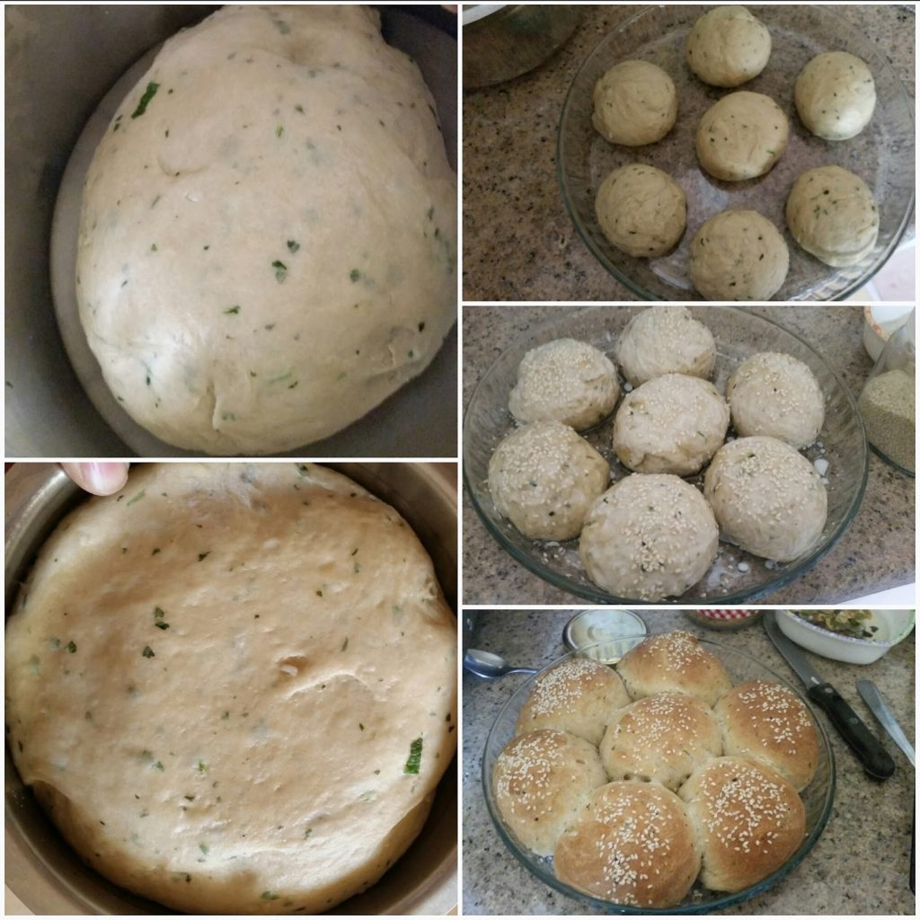 step by step instructions for bread rolls